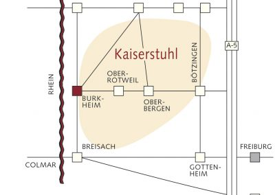 Verkehrsspinne_Kaiserstuhl